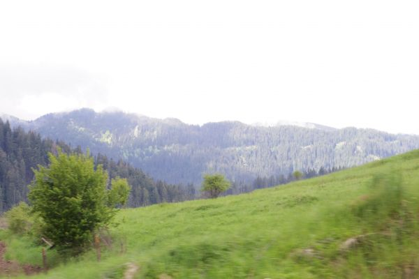 The Rhodopes